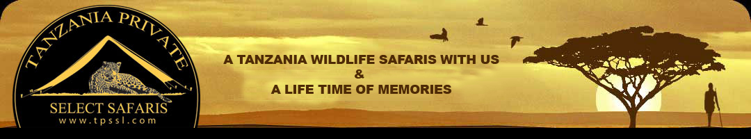 Tanzania Serengeti Select Safaris